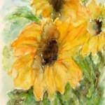 Tre girasoli - (fiori)