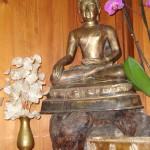 Il Buddha storico, Shakyamuni