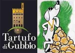 Mostra-mercato-nazionale-del-tartufo-bianco-e-dei-prodotti-agro-alimentari-Gubbio